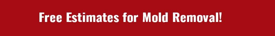 Mold Removal Services Arizona