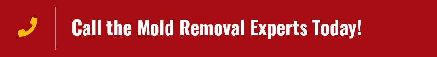 Arizona Mold Removal Services